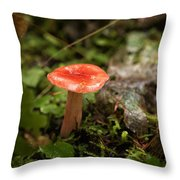 Red Coral Mushroom Throw Pillow