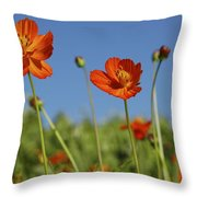 Red Cosmos Flower Throw Pillow