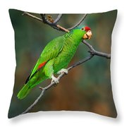 Red-crowned Amazon Throw Pillow