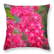 Red-flowering Currant Blossom Throw Pillow