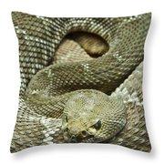 Red Diamond Rattlesnake 3 Throw Pillow