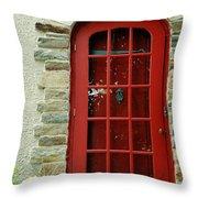 Red Door In Baltimore Throw Pillow