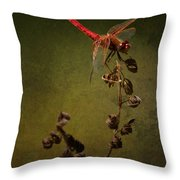 Red Dragonfly On A Dead Plant Throw Pillow