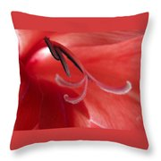 Red Dream - Gladiolus Throw Pillow