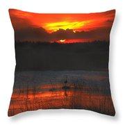 Red Dusk Throw Pillow