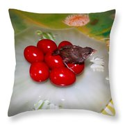 Red Eggs Bird And Flowers Throw Pillow