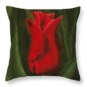 Red Elegance Throw Pillow