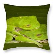 Red-eyed Tree Frogs In Amplexus Sleeping Throw Pillow