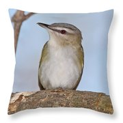 Red-eyed Vireo Throw Pillow