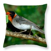 Red-faced Warbler With Caterpillar Throw Pillow