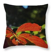 Red Fall Leaves Close Up Throw Pillow