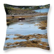 Red Flat At Low Tide Throw Pillow