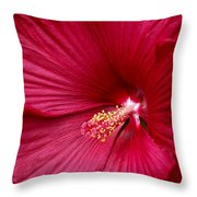 Red Flower 2 Throw Pillow
