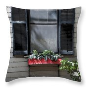 Red Flower Box St Augustine Throw Pillow