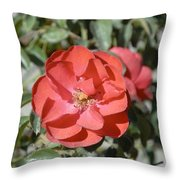 Red Flower II Throw Pillow