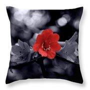 Red Flower Petals Throw Pillow