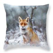 Red Fox Blue World Throw Pillow