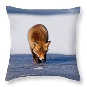 Red Fox Crossing A Frozen Lake Throw Pillow