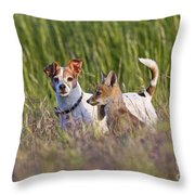 Red Fox Cub With Jack Russel Throw Pillow