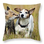 Red Fox Cub With Jack Russell Throw Pillow