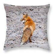 Red Fox Egg Thief Throw Pillow
