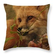 Red Fox In Autumn Leaves Stalking Prey Throw Pillow