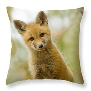 Red Fox Kit Up Close Throw Pillow