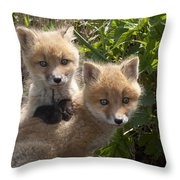 Red Fox Kits Playing Alaska Throw Pillow
