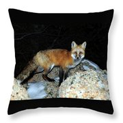 Red Fox - Piercing Eyes Throw Pillow