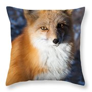 Red Fox Standing Throw Pillow