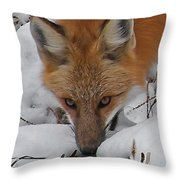 Red Fox Upclose Throw Pillow