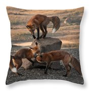 Red Foxes Vulpes Fulva Throw Pillow