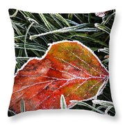 Red Frosty Leaf On Frozen Ground Throw Pillow