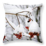 Red Fruit With Snow Throw Pillow