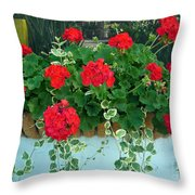 Red Geranium 1 Throw Pillow