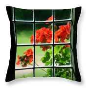 Red Geranium Through Leaded Window Throw Pillow