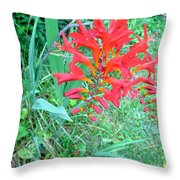 Red Gift Throw Pillow