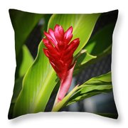 Red Ginger 2 Throw Pillow