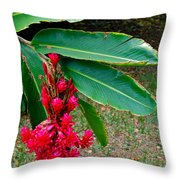 Red Ginger Chandelier Throw Pillow