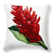 Red Ginger Poem Throw Pillow