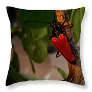 Red Glowing Beetle Throw Pillow