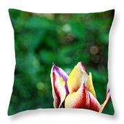 Red Gold And Green Throw Pillow