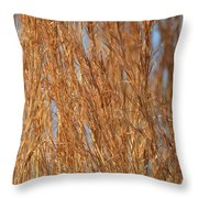 Red Gold Throw Pillow
