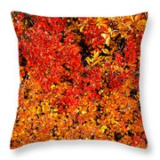 Red-golden Alpine Shrubs Throw Pillow