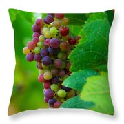Red Grapes Throw Pillow by Hannes Cmarits