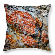 Red Growth Rock Throw Pillow