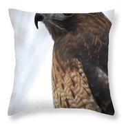 Red Hawk I Throw Pillow
