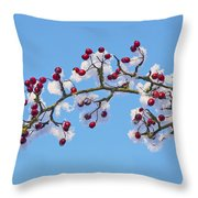 Red Haws Frosted By Snow Throw Pillow