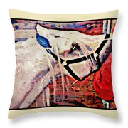 Red Hay Bag Throw Pillow