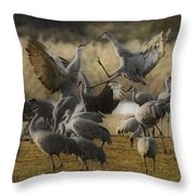 Red Headed Tempers Throw Pillow